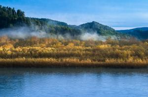 Fall Color Report - Klamath and Redwood NP 2